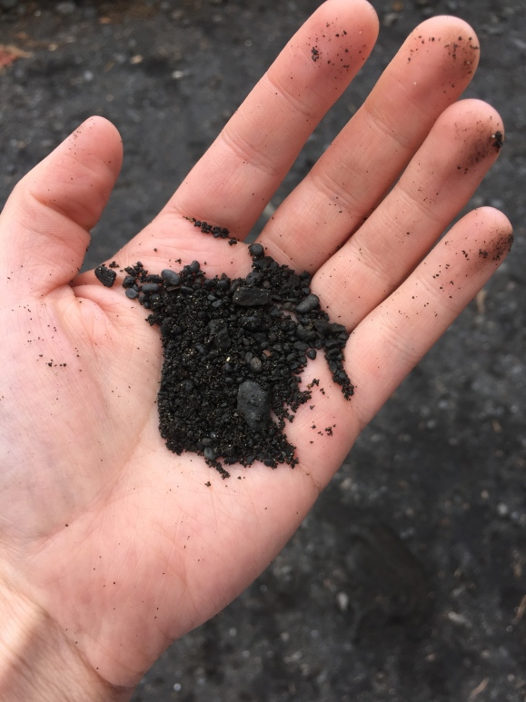 An up-close look at the black sand!